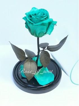 Бирюзовая мини-роза в колбе