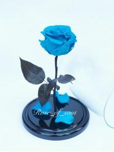 Голубая премиум-роза в колбе