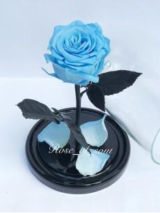Голубая мини-роза в колбе