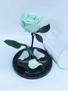 Мятная мини-роза в колбе