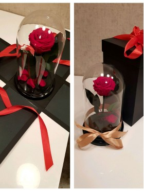 Вау-коробка для розы в колбе