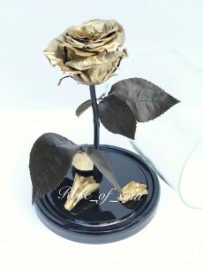 Золотая стандарт-роза в колбе